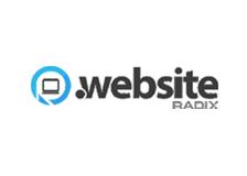 Акция на регистрацию доменов .Website