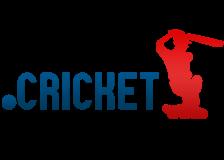 Акция на регистрацию доменов .Cricket